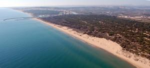 Guardamar del Segura Aerial View